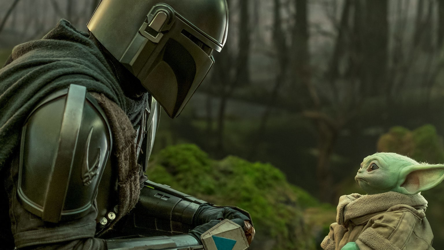 """The Mandalorian 
