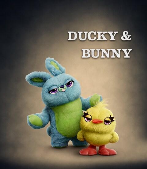 TS4-Bunny