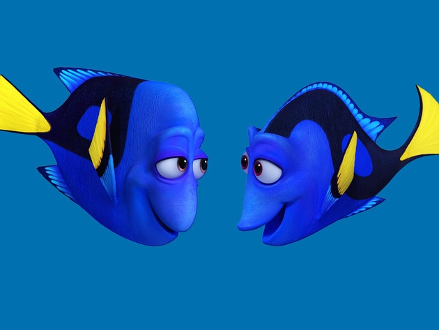 Jenny and Charlie are Dory's mum and dad. They strive to arm her with the skills she'll need to n...