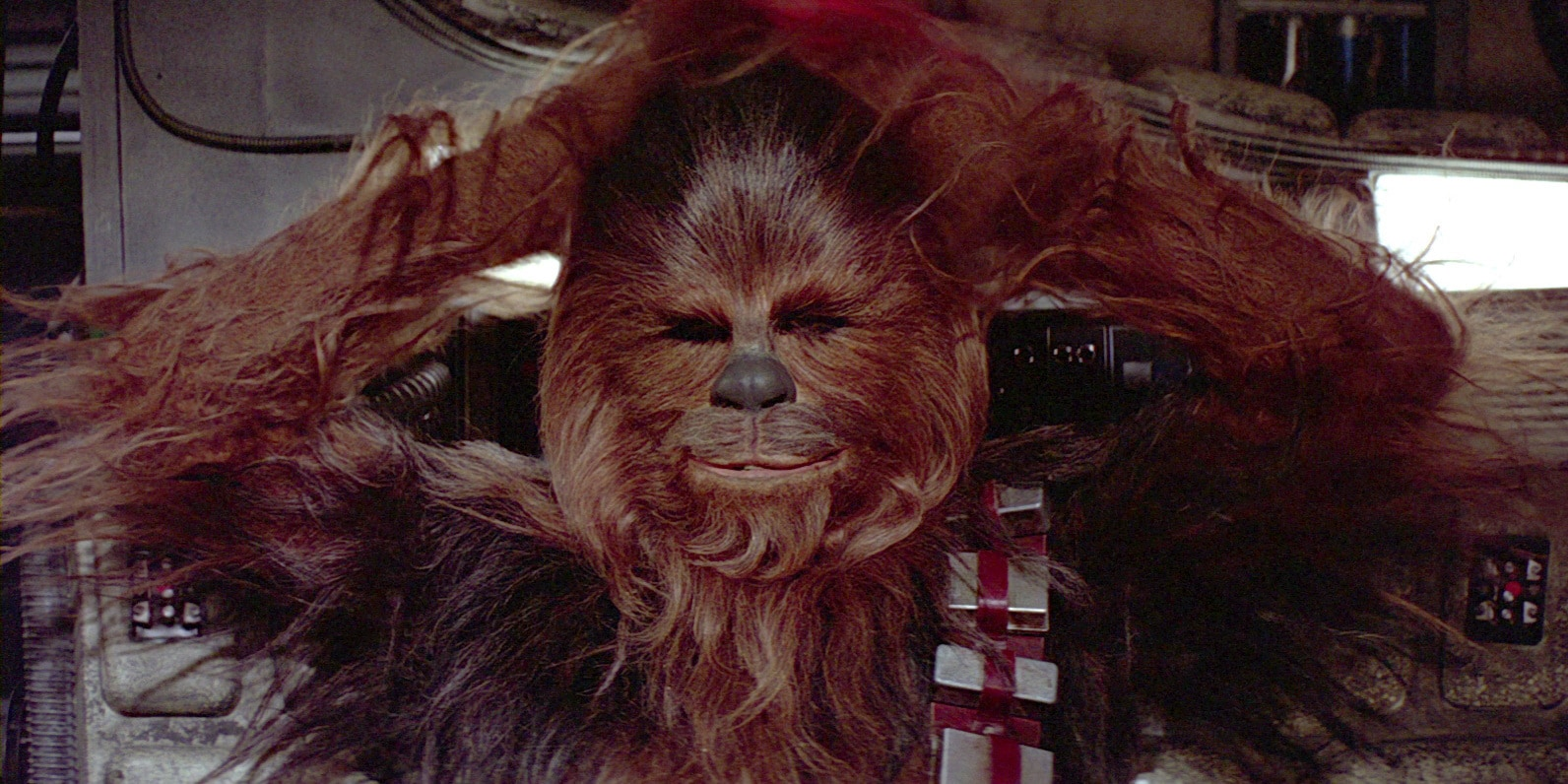 """I like that Wookiee"" - a Chewbacca thread..  Chewie-db_2c0efea2"