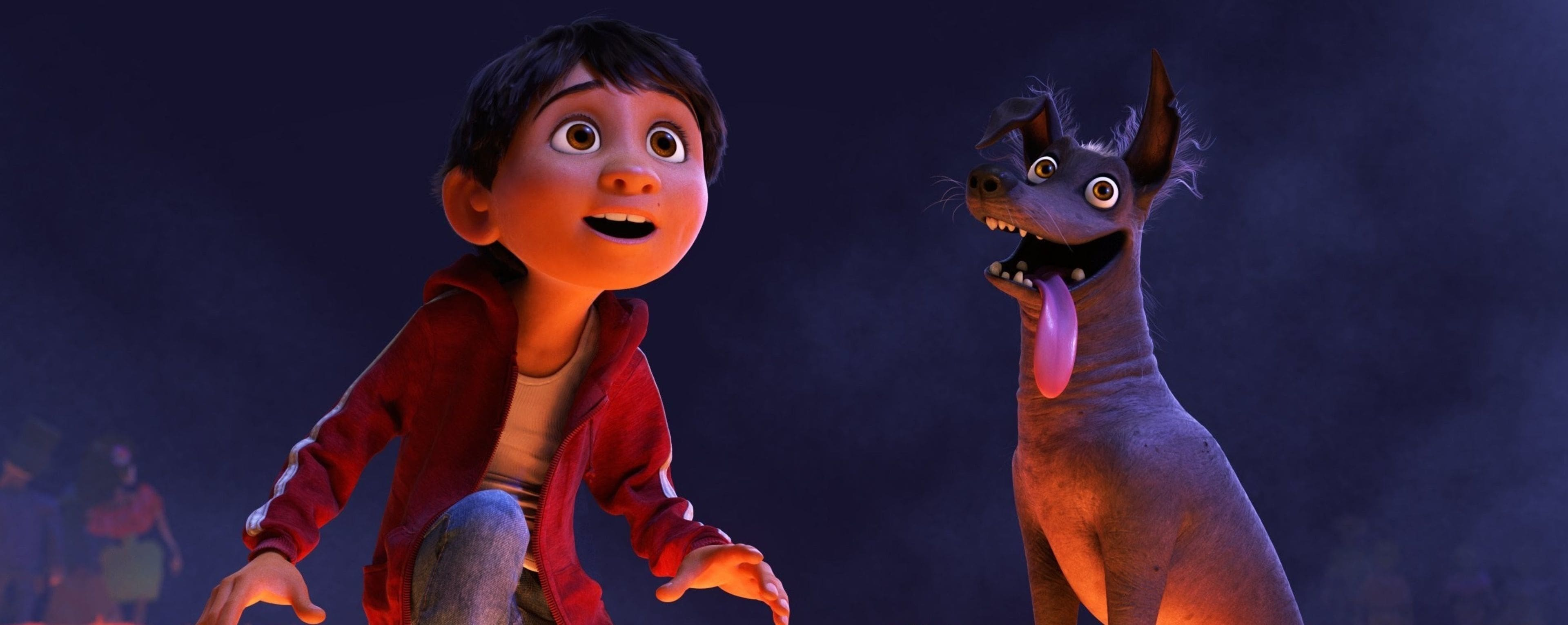 Miguel from coco