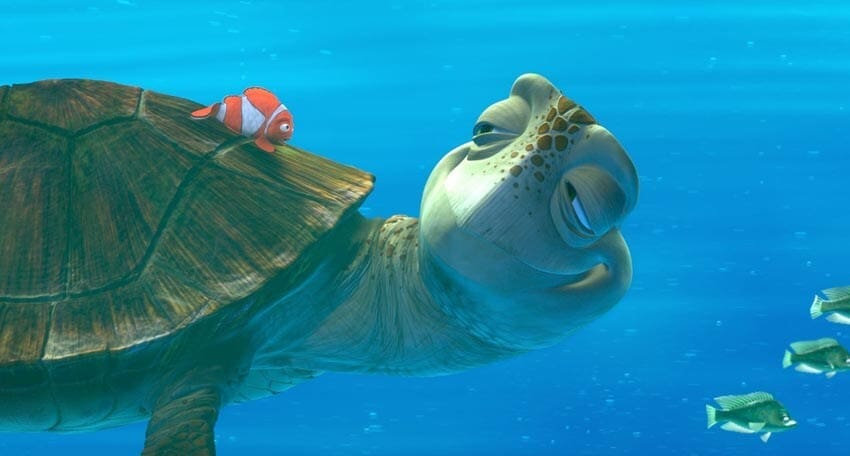 """Marlin sitting on a sea turtle's back in the animated movie """"Finding Nemo"""""""