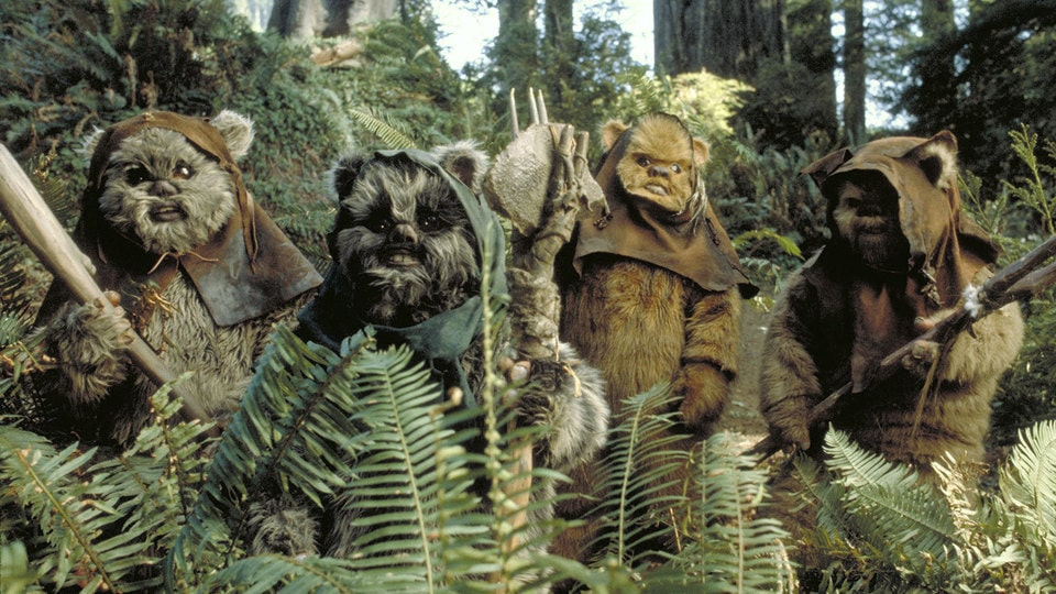 Image result for ewoks