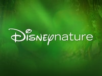 Disneynature collection