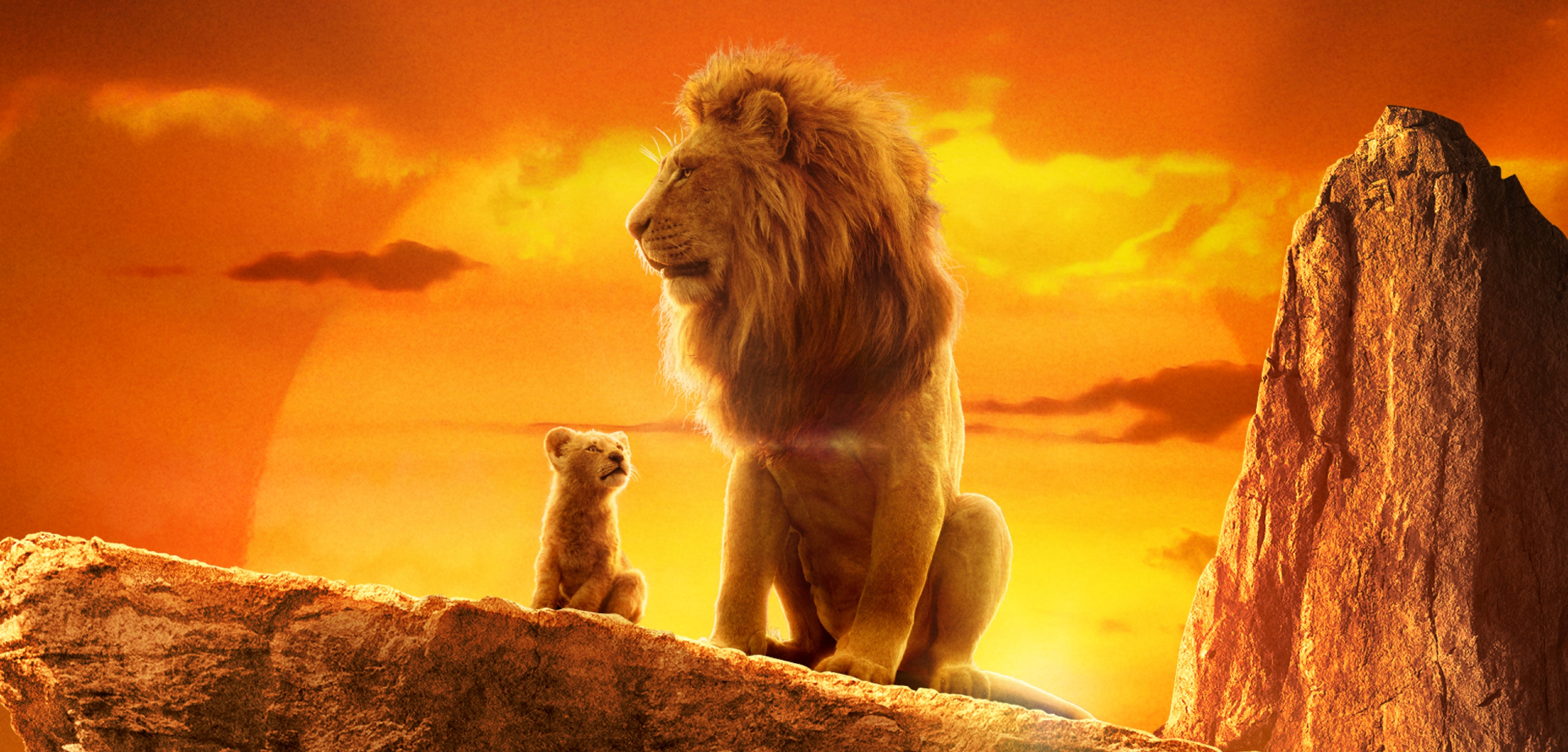 A still image from The Lion King (2019)