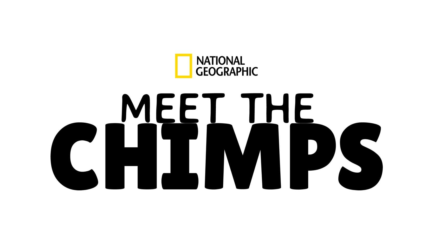 """Disney+ debuts trailer and key art for """"Meet the Chimps"""" from National Geographic"""