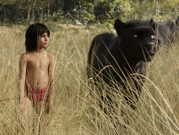 Mowgli (newcomer Neel Sethi) and Bagheera (voice of Ben Kingsley) embark on a captivating journey...