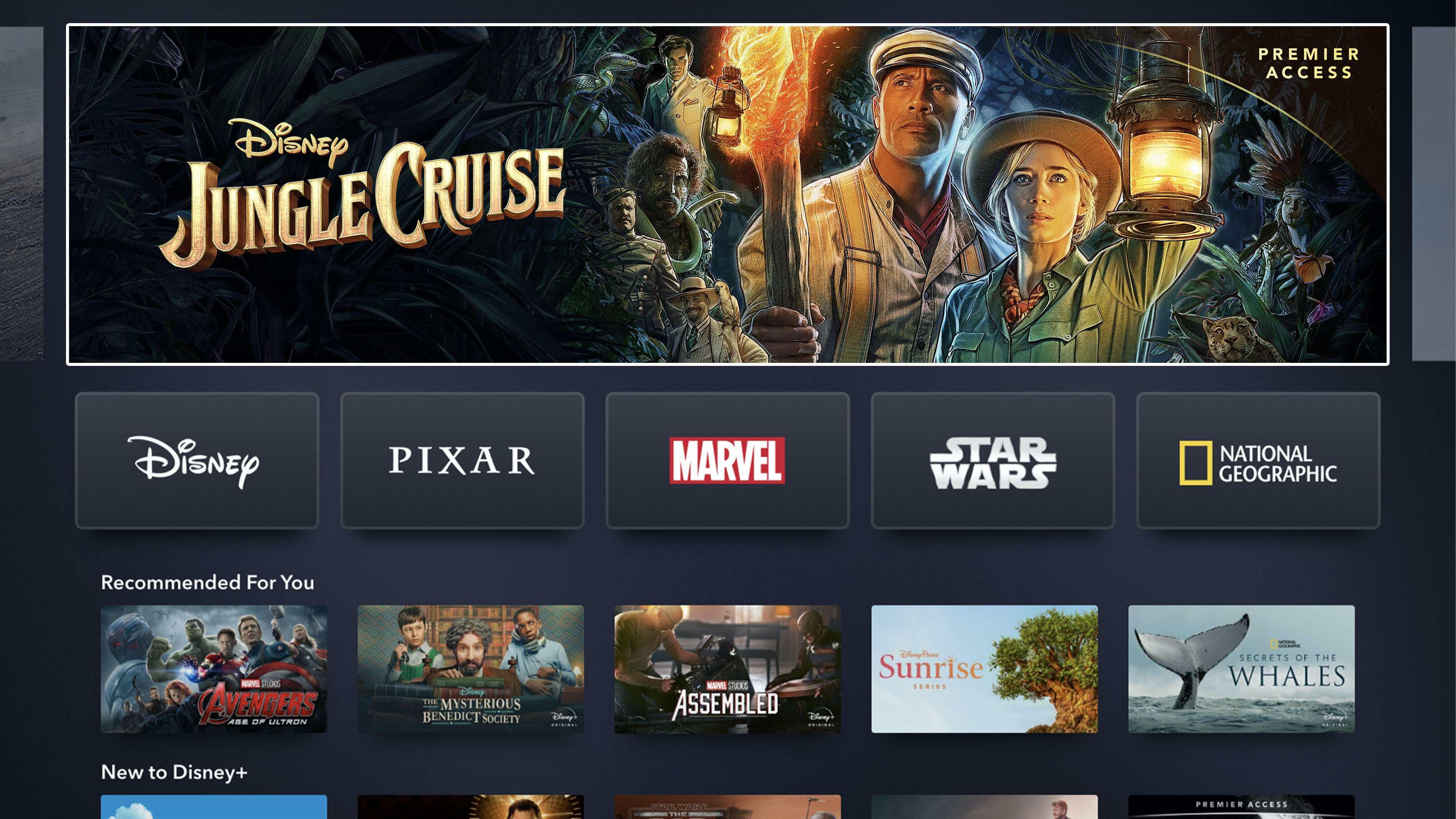 Disney+ App Home Page on Connected TV