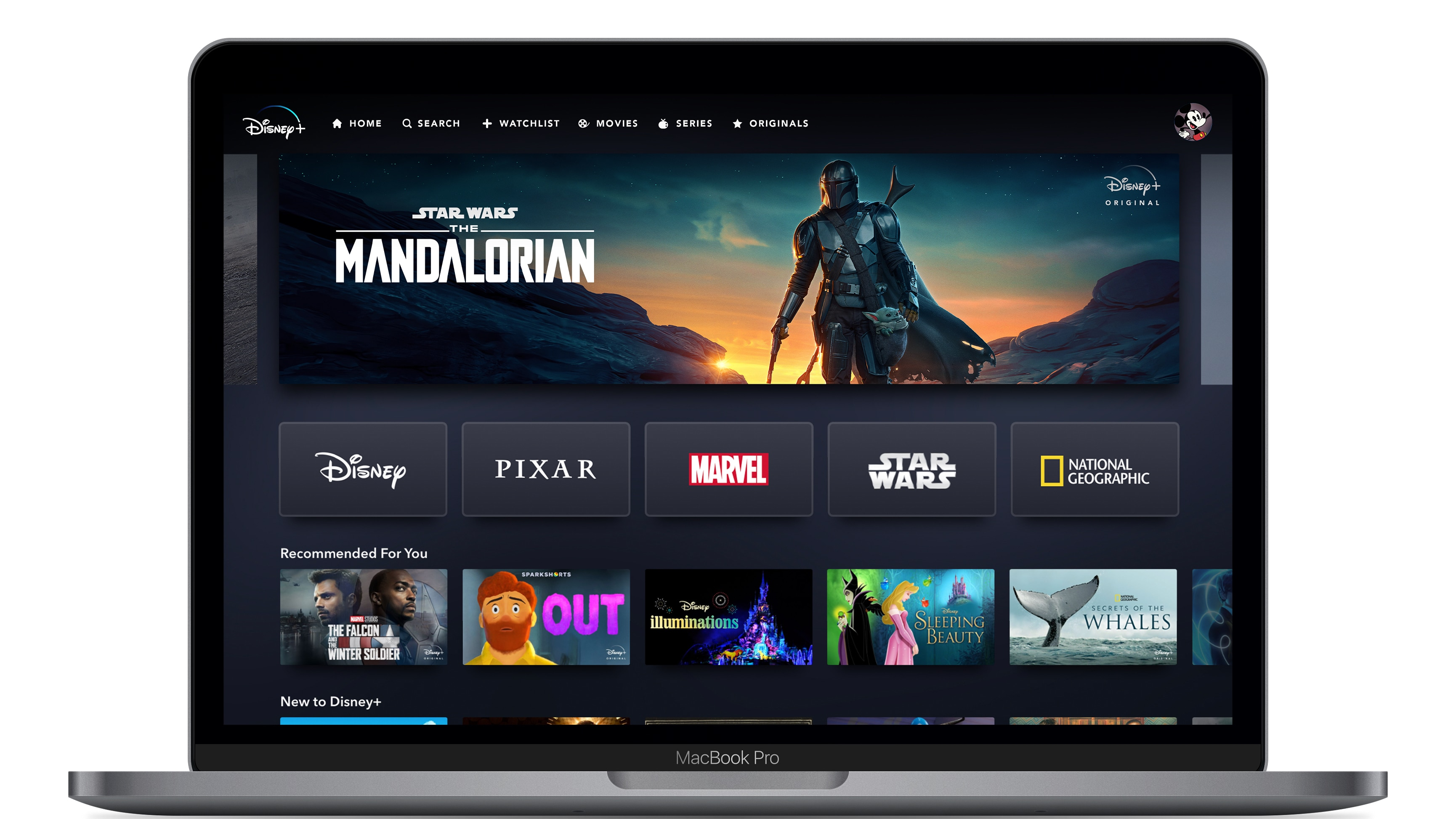 Disney+ App Home Page on Web Device