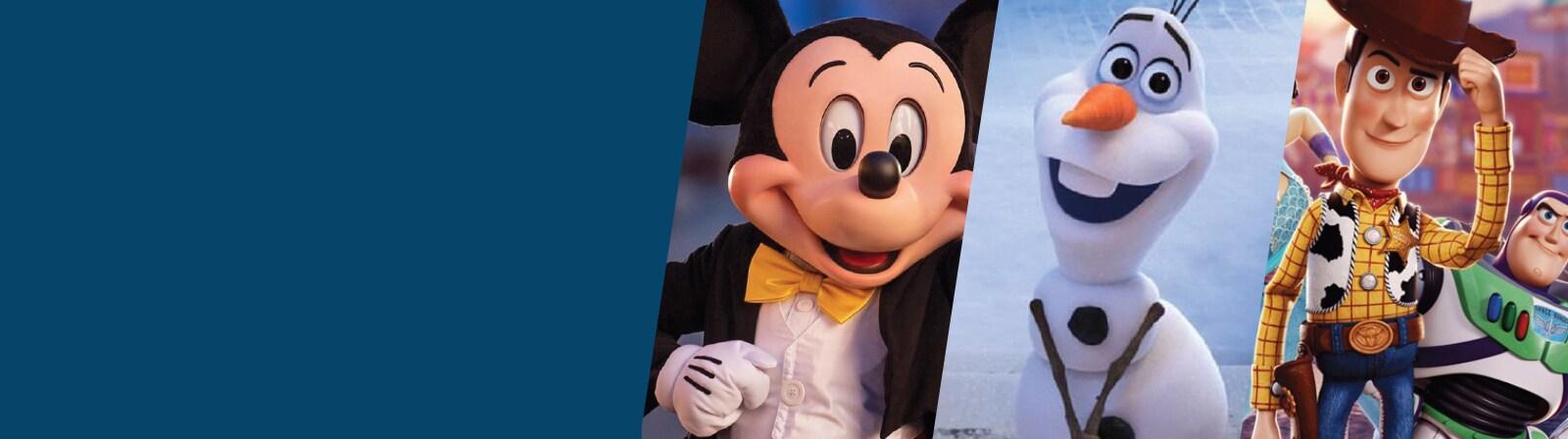 Disney Momentos Magicos