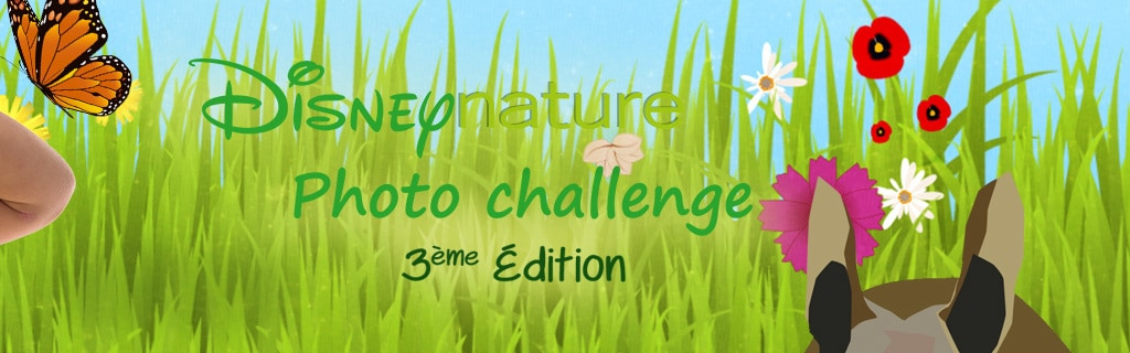 Disneynature Photo Challenge (hero)