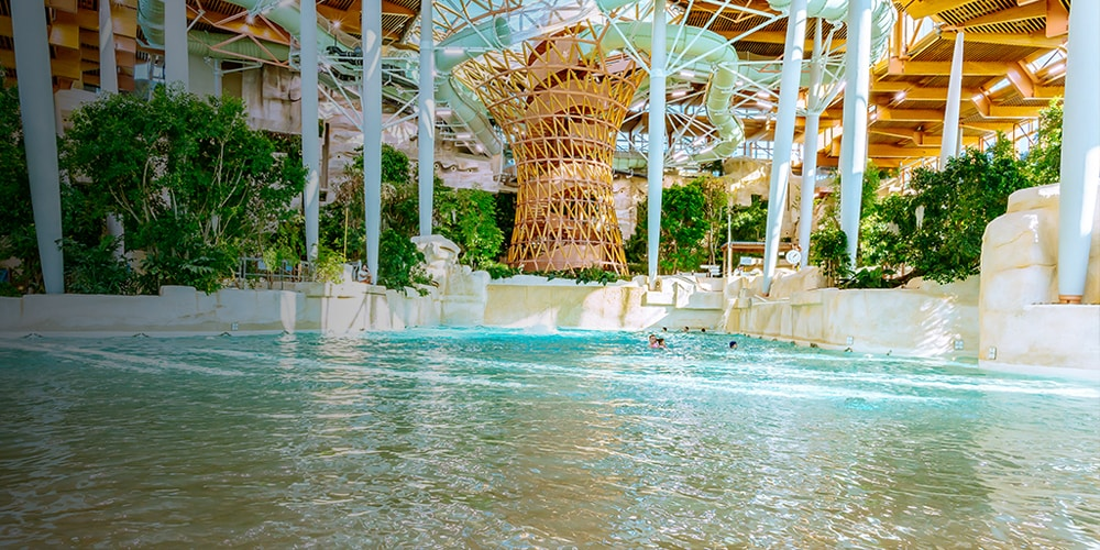 Indoor water park with slides and trees at Disneyland Paris
