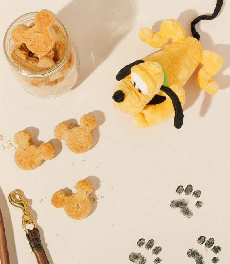 Homemade Mickey-Shaped Dog Treat