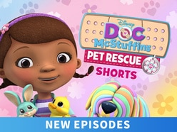 Doc McStuffins: Pet Rescue Shorts