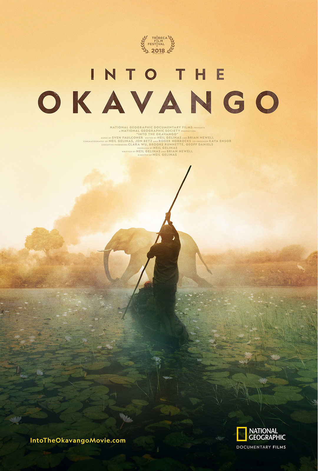 Into the Okavango movie poster