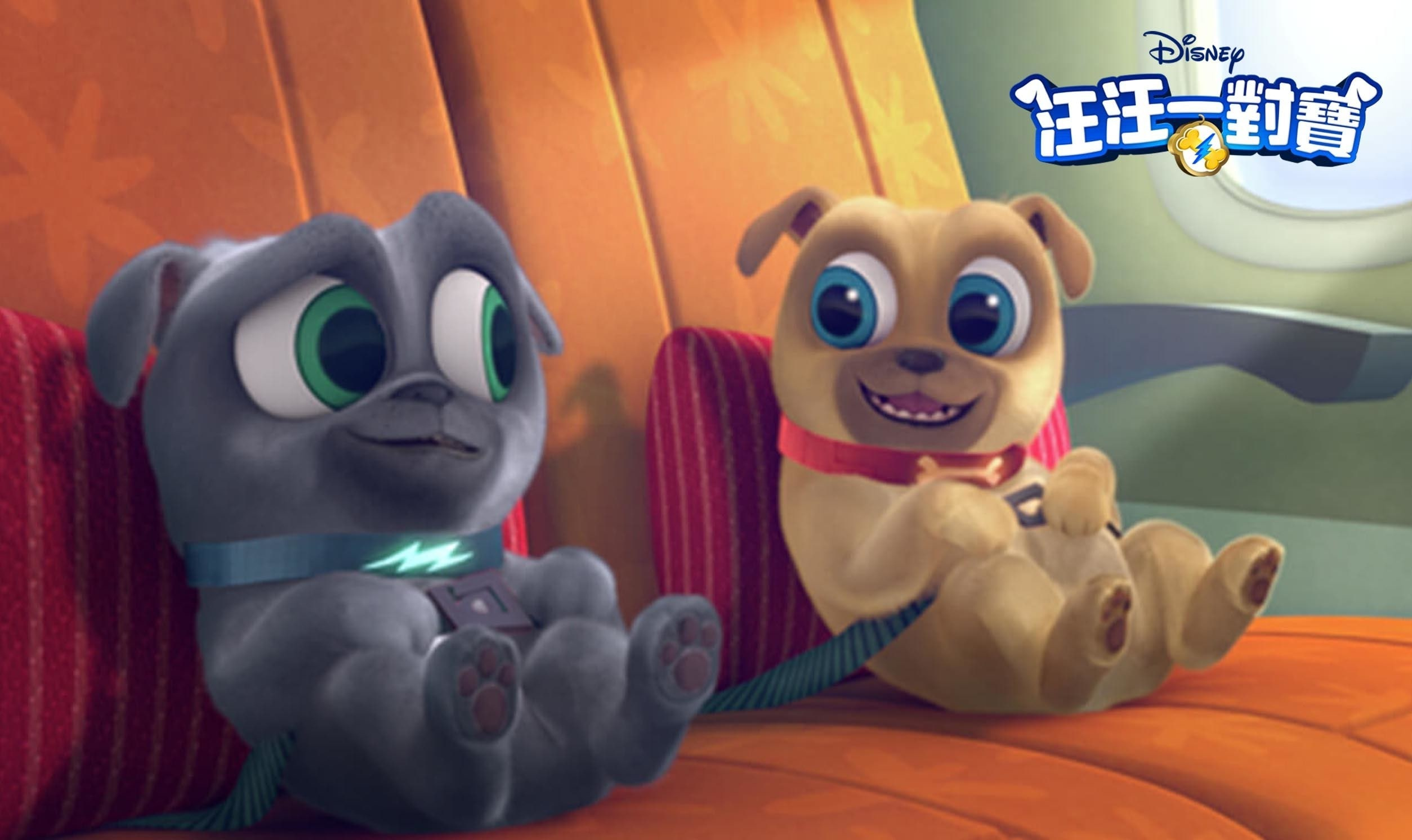 Puppy Dog Pals | Show