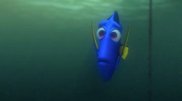 "A concerned Dory in ""Finding Nemo"""
