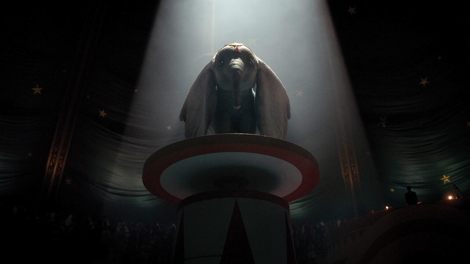 Dumbo - Gallery