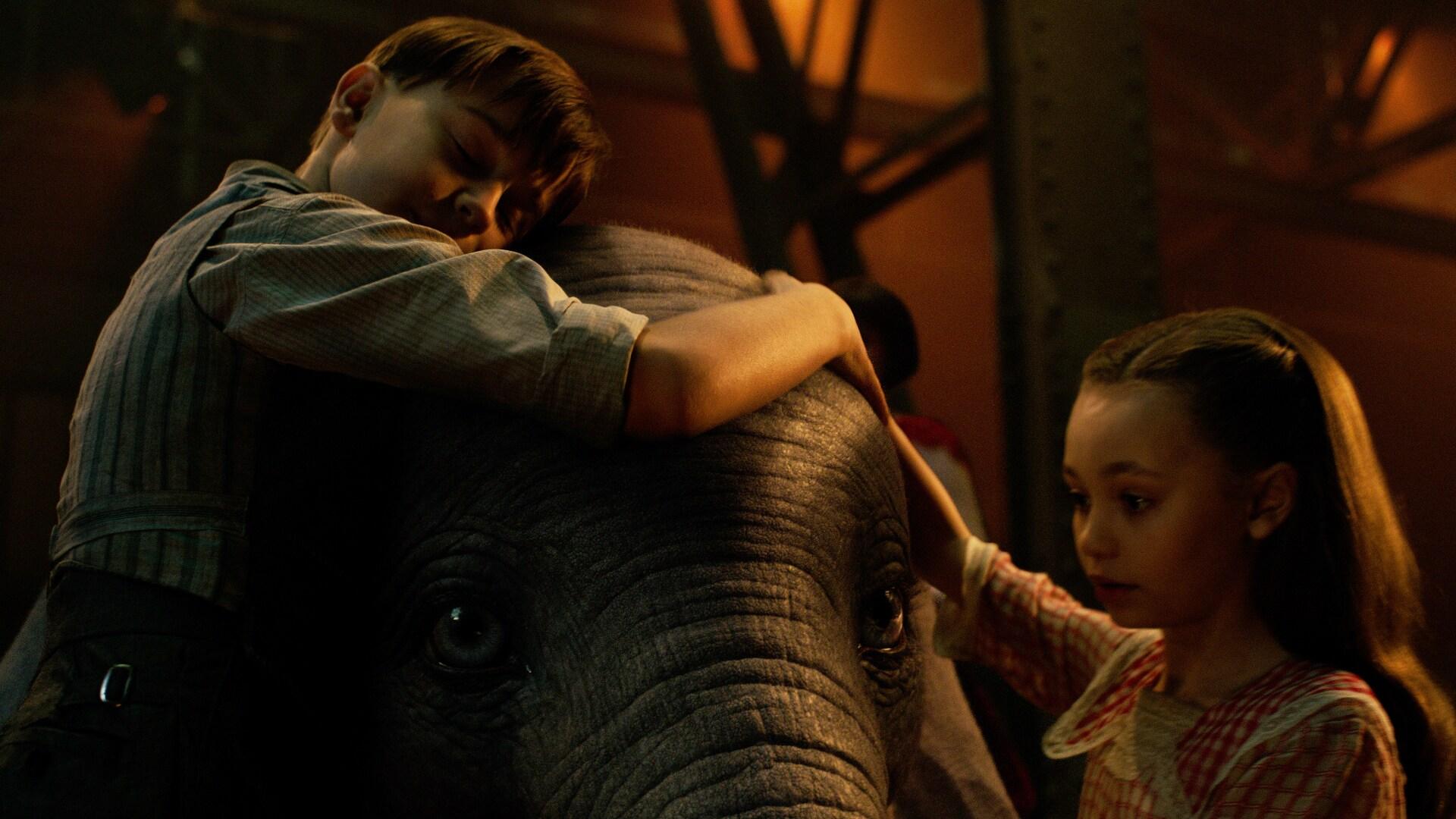 Dumbo image showcase 03