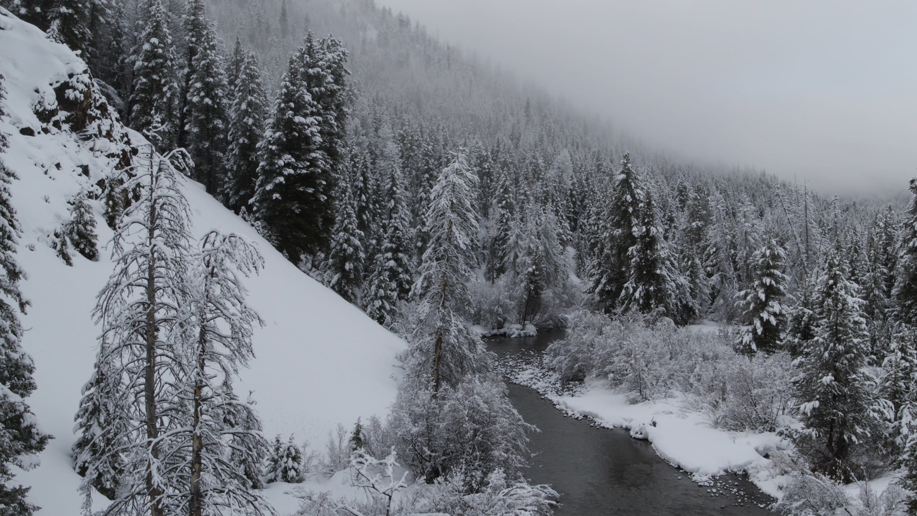 Big Wood River in Idaho with snow-covered Evergreen trees on the mountain ridge. (National Geographic for Disney+)