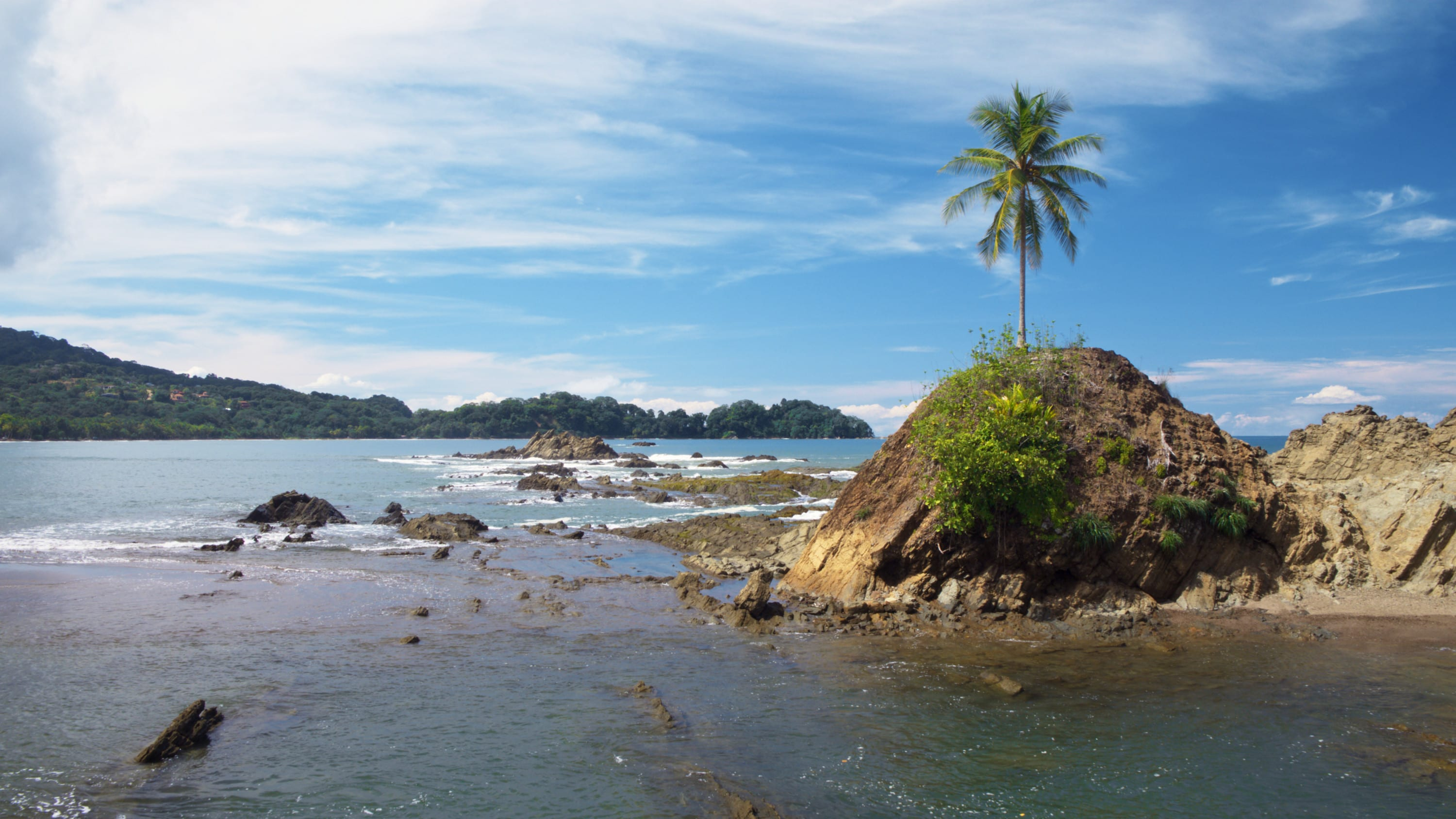 A single tree on a rocky island in Manuel Antonio National Park. (National Geographic for Disney+)
