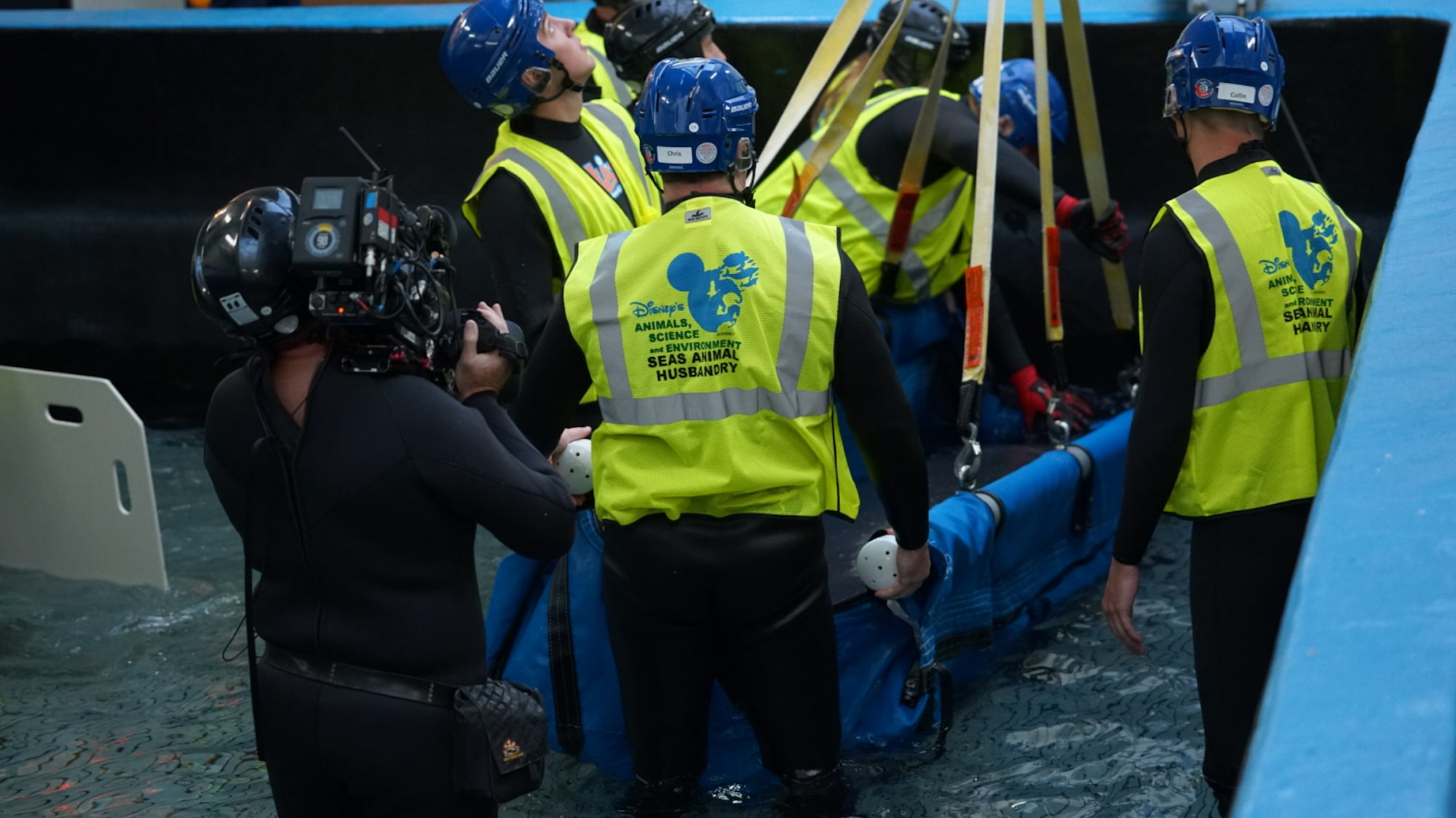 Production team film as Lou the manatee is transported to the veterinarian treatment room. Aquarist looks up at the rest of the team located on the roof of the aquarium. (Disney)