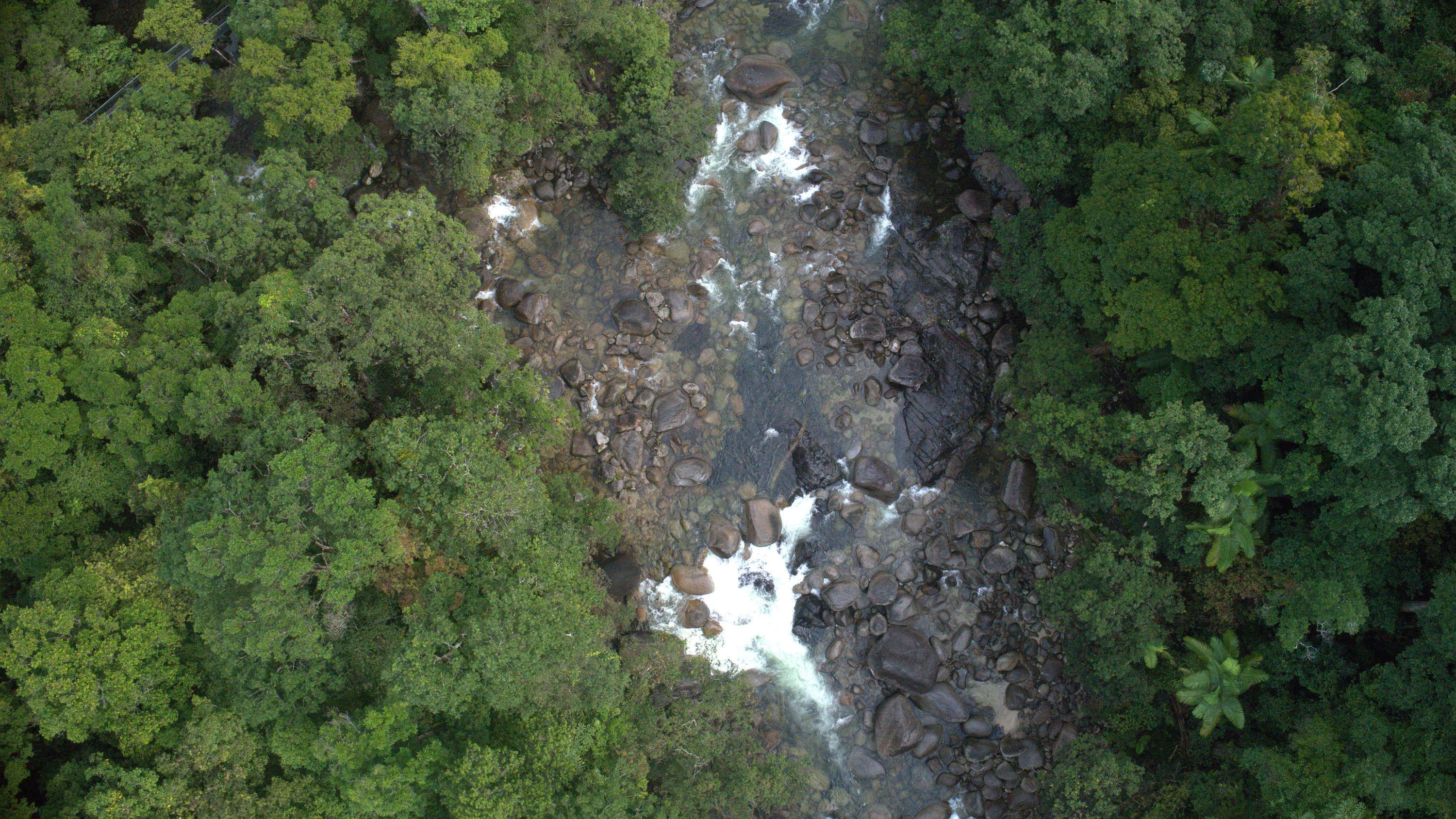 Aerial view of the Daintree River. (National Geographic for Disney+)
