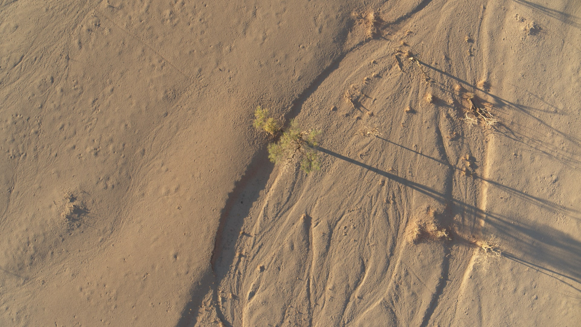 Dry riverbeds in the NamibRand Nature Reserve, Namibia. (National Geographic for Disney+)