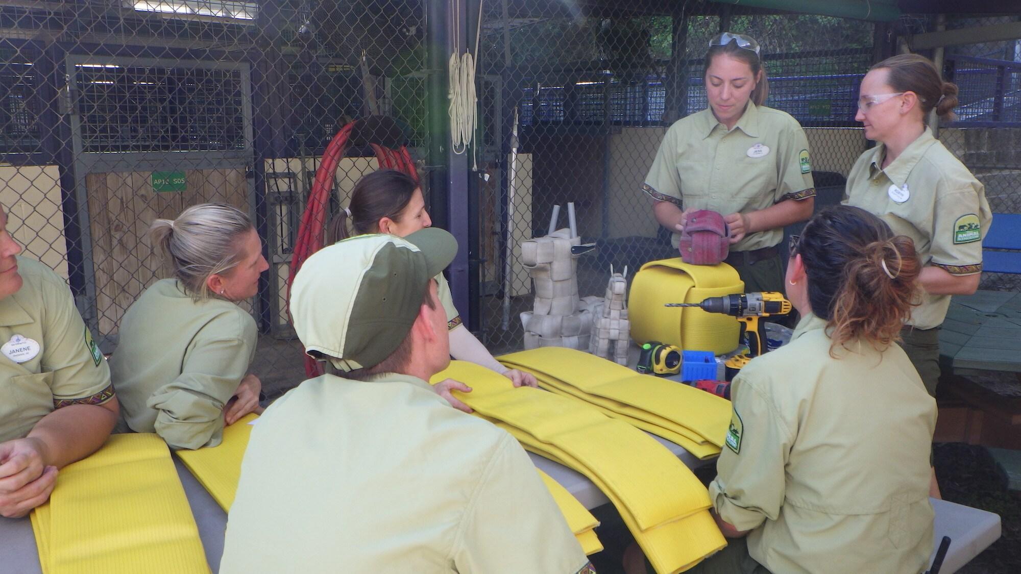 Dugan the Southern White Rhino's birthday prep. (Disney)