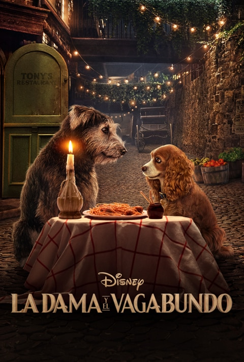 Disney Plus - Lady and The Tramp - Poster