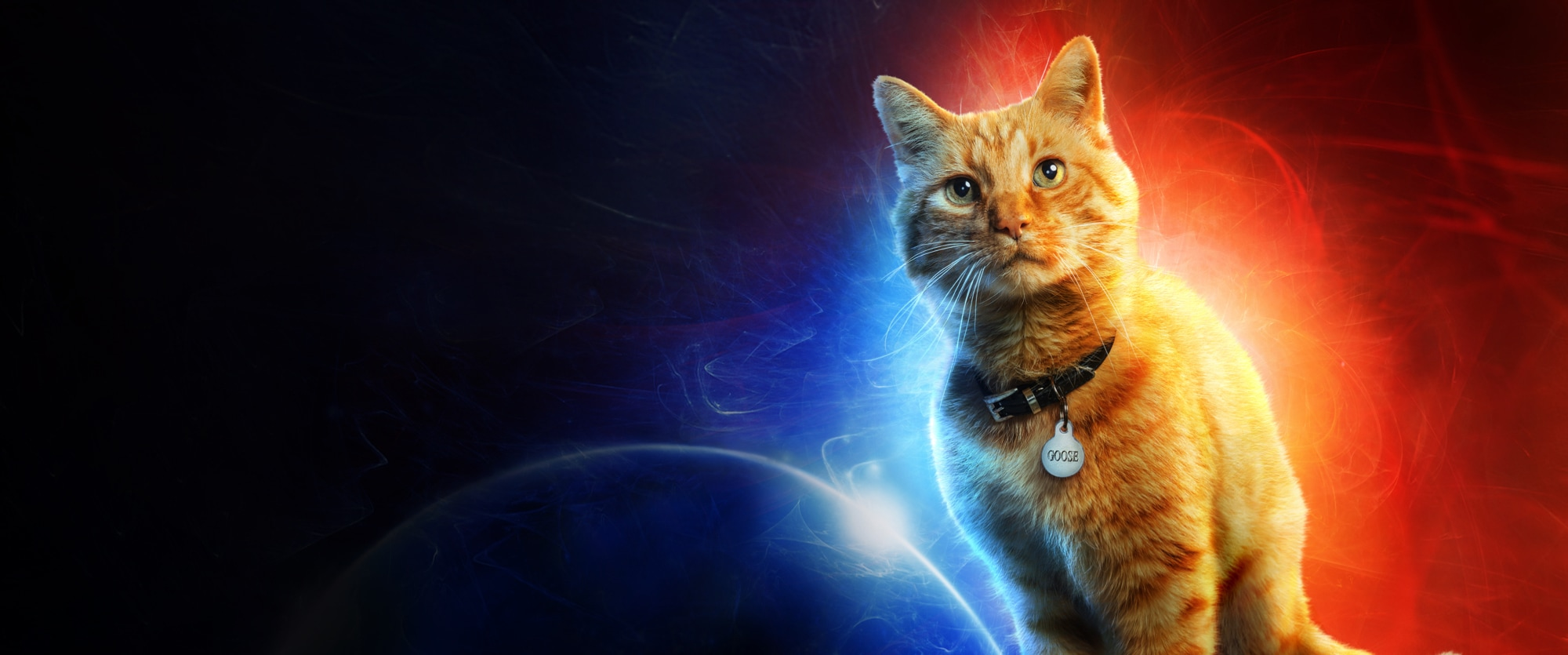Captain Marvel | In Cinemas Now | Goose The Cat