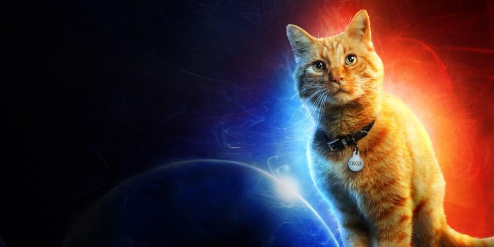 Captain Marvel | Nu på bio