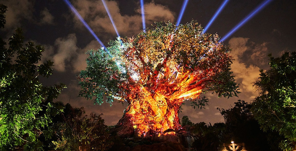 Epcot's Tree of Life awakens at nighttime with vibrant lights, animal projections and special effects