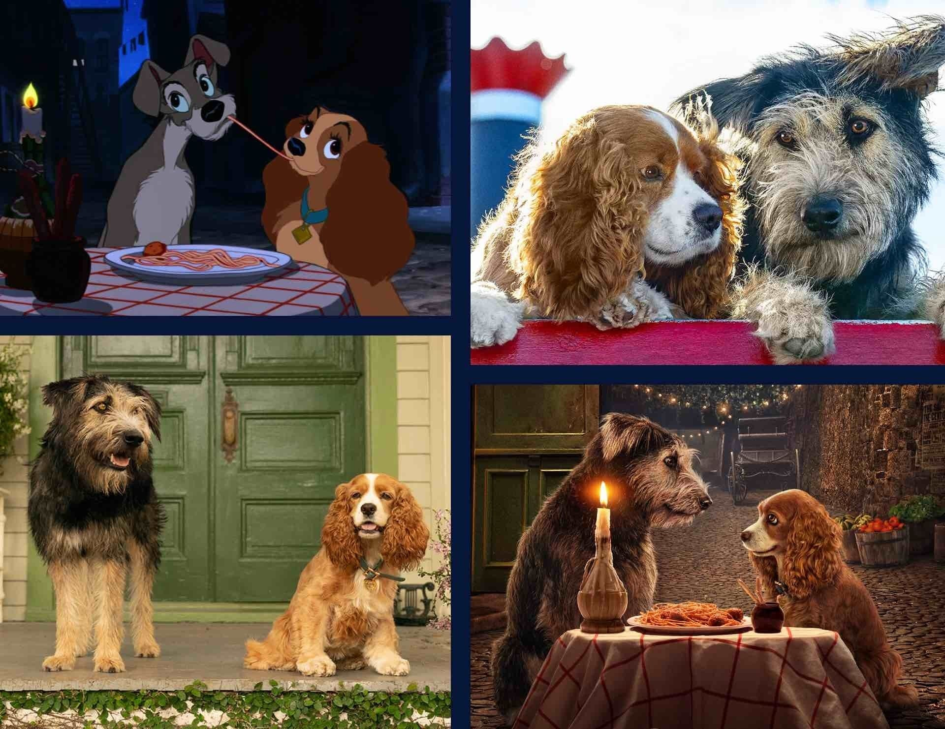 A still image from Lady and the Tramp