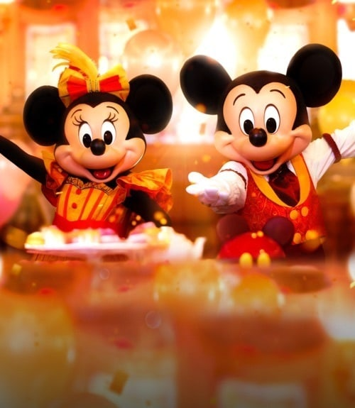 Disneyland Paris | Celebration Package