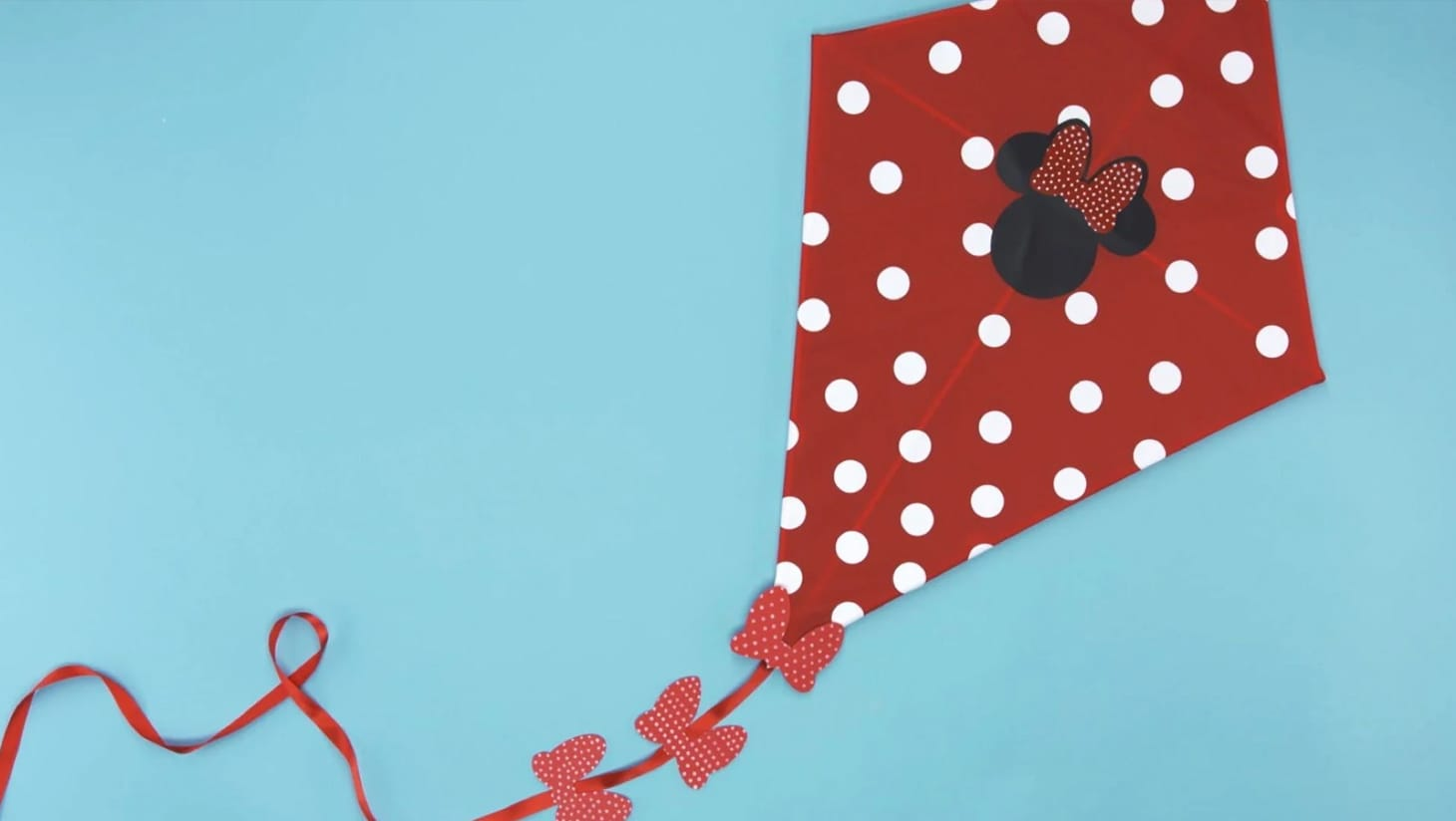 A minnie mouse inspired kite