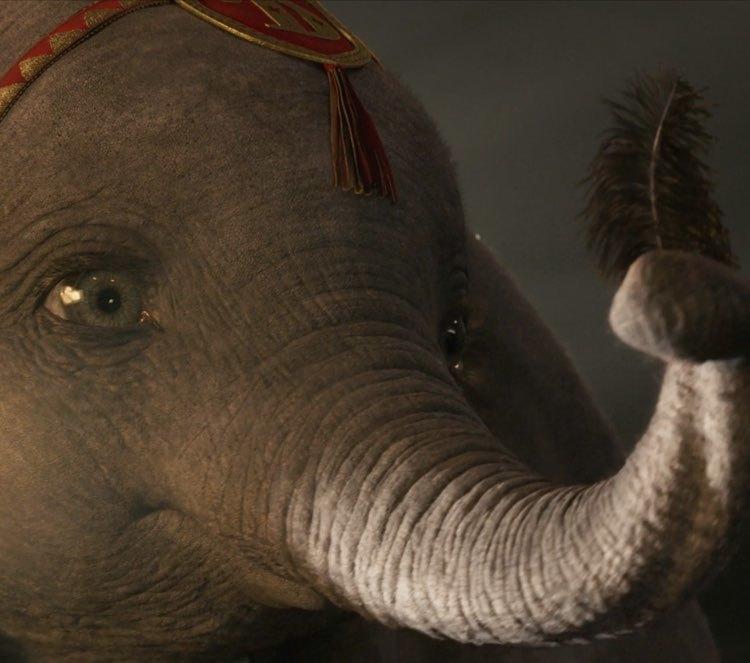 Dumbo Trailer Y Fecha De Estreno