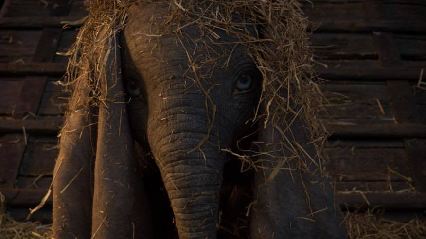 Dumbo | Vê o novo trailer - Wonder