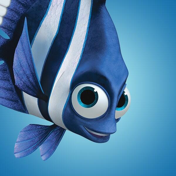Blue Fish Names | Finding Nemo Characters Au Disney Australia Movies
