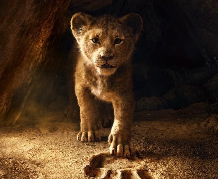 Resultado de imagen de el rey leon
