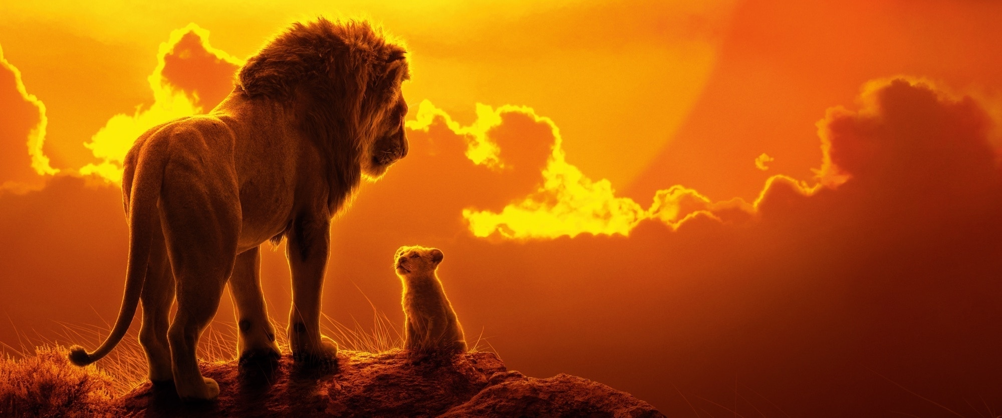 O Rei Leão (The Lion King) 2019 Trailer