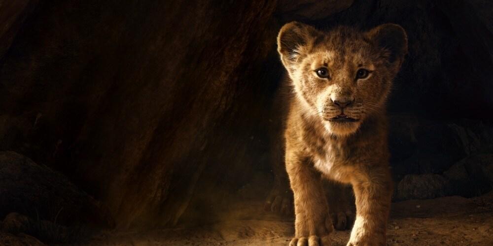 Lví král | V kinech od 18. července