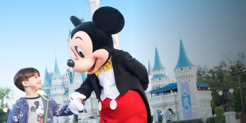 Disney World | Offer From