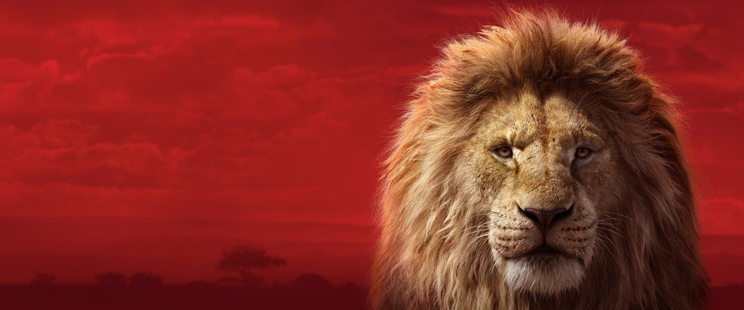 Der König der Löwen (2019) Trailer