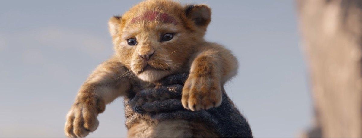 The Lion King 2019 Trailer Release Date Disney Uk