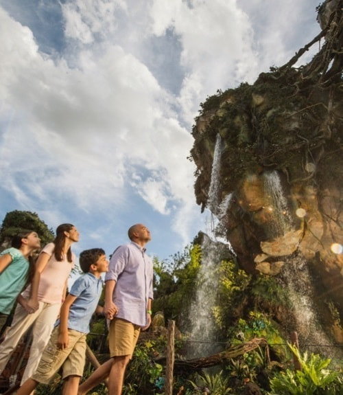 Disney World | Pandora