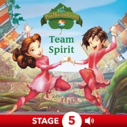 Disney Fairies: Team Spirit