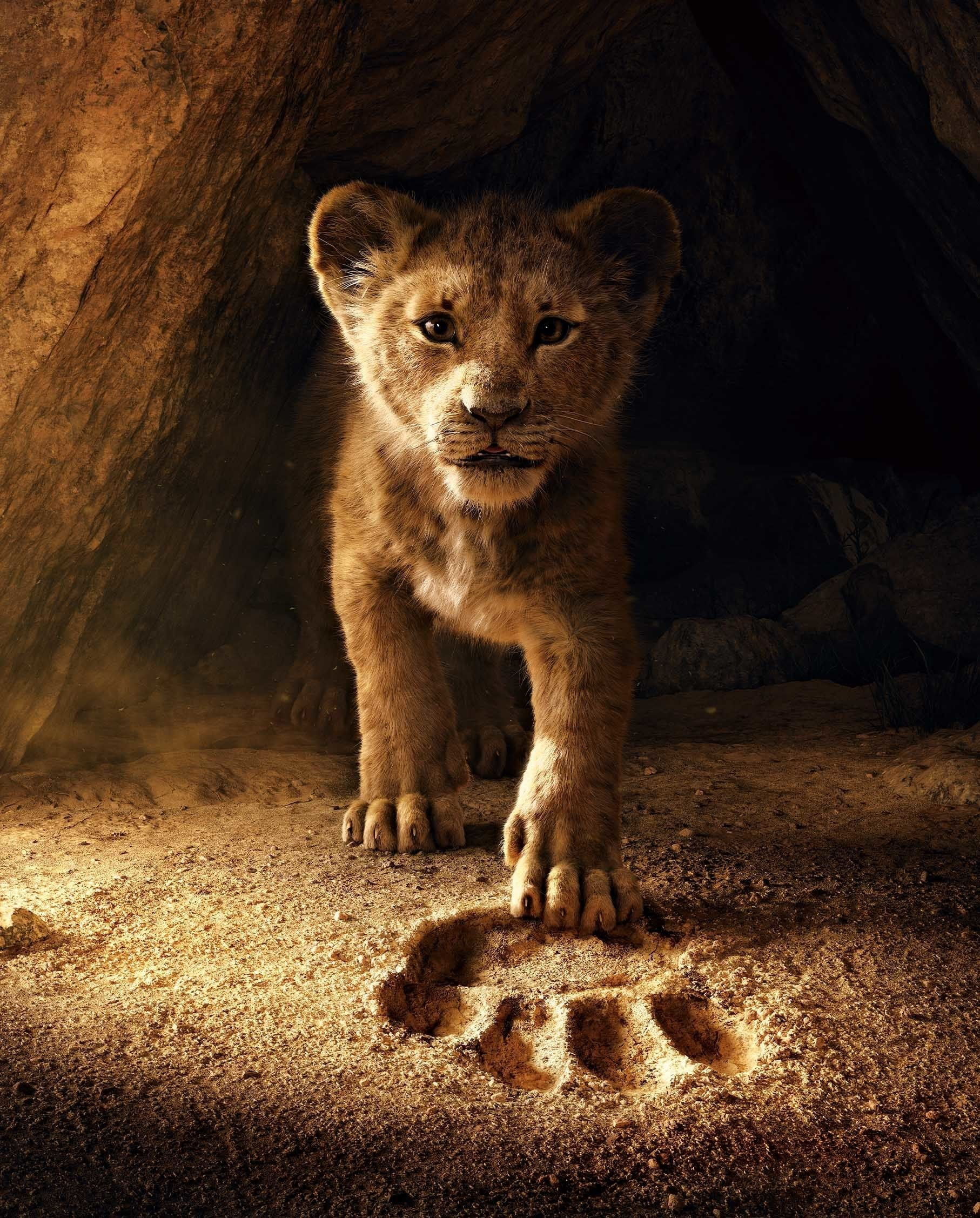 Lion King | Homepage