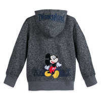Image of Mickey Mouse and Friends Knit Hoodie for Boys - Disneyland 2019 # 2