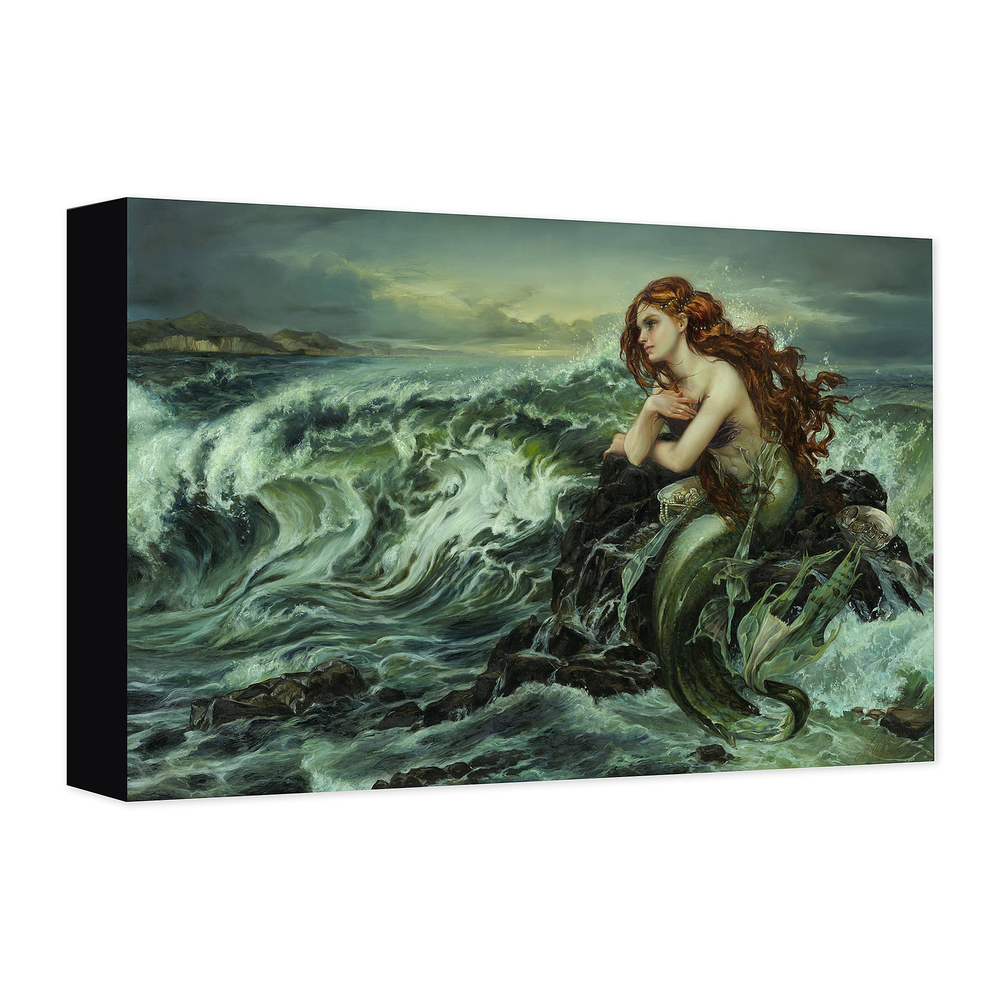 Ariel ''Drawn to the Shore'' Giclée on Canvas by Heather Theurer